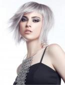 Краска для волос — Directions Silver Gray (D170127) - цена, 4