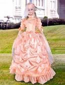 Бальное Викторианское платье 2 пол. 19 ст. (125027r) - foto