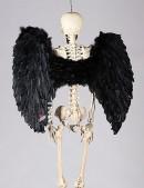 Большие черные крылья (100 см) (420032) - foto