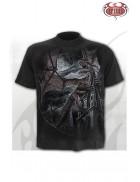 Мужская футболка Dragon Kingdom SD013